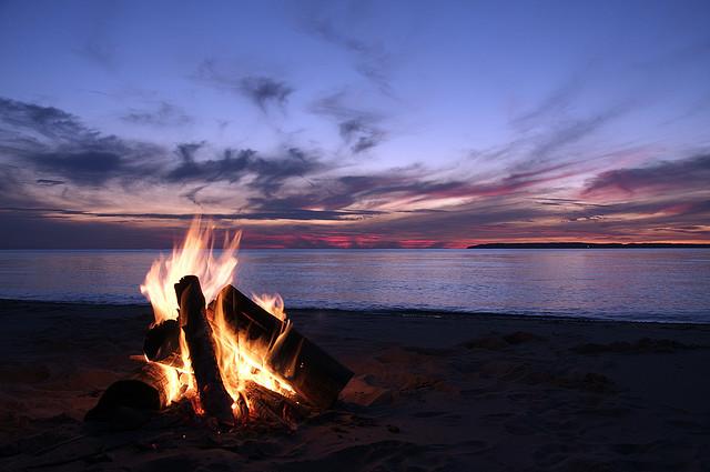 Shell Key Campfires Banned During Summer Nesting Season